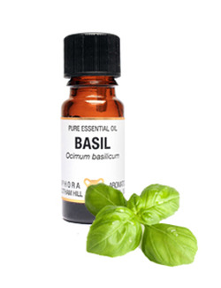 Amphora Aromatics Basil Essential Oil 10ml