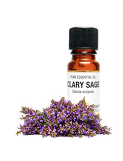 Amphora Aromatics Clary Sage Essential Oil 10ml