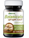 Lifeplan Ginger Root Extract 90 Tabs