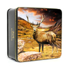Simpkins British Stag Gift Tin with Mixed Fruit Drops 250g SHORT DATED