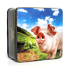 Simpkins British Farmyard Pig Tin with Mixed Fruit Drops 250g SHORT DATED