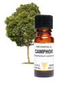 Amphora Aromatics Camphor Essential Oil 10ml