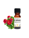 Amphora Aromatics Rose Geranium Essential Oil 10ml